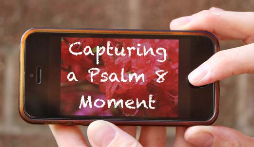 Capturing a Psalm 8 Moment
